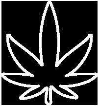 Maggie's Farm Marijuana | Colorado's Premium Organically
